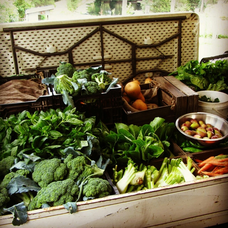 Loaded up and ready for the SAGE farmers markets