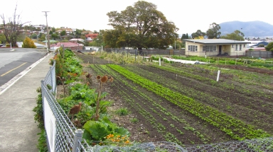 Hobart City Farm