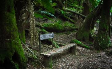John's Hobbit Grove